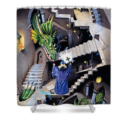 Lord Of The Dragons Shower Curtain by Irvine Peacock