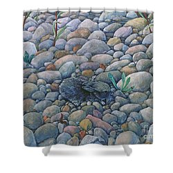 Lost And Found Rabbit Shower Curtain
