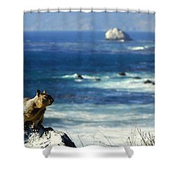 Lost At Sea Shower Curtain by Karen Wiles