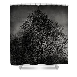 Lost In Moments Shower Curtain by Taylan Apukovska