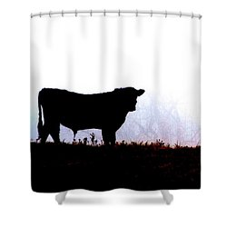 Shower Curtain featuring the photograph Lost In The Fog by Carlee Ojeda