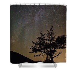 Lost In The Night Shower Curtain by James BO  Insogna
