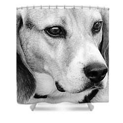 Shower Curtain featuring the photograph Lost In Thought by Erika Weber
