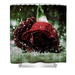 Lost Love Shower Curtain