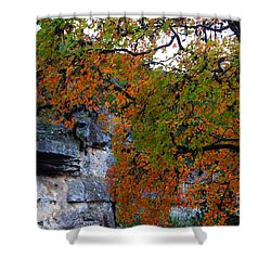 Fall Foliage At Lost Maples State Natural Area  Shower Curtain