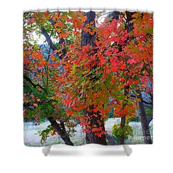 Lost Maples Fall Foliage Shower Curtain