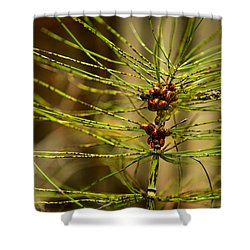 Lots O Ladies Shower Curtain