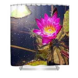 Lotus Day Shower Curtain