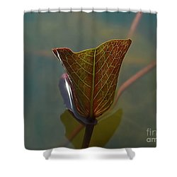 Shower Curtain featuring the photograph Lotus Leaf by Michelle Meenawong