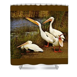Loud Mouth Shower Curtain by Nikolyn McDonald