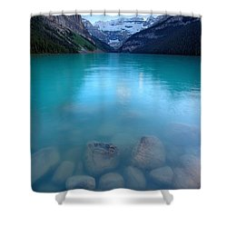 Shower Curtain featuring the photograph Louis With An E  by David Andersen