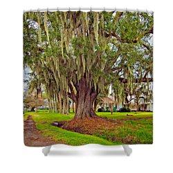 Louisiana Country Oil Shower Curtain by Steve Harrington