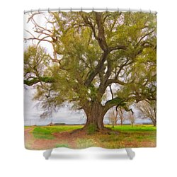 Louisiana Dreamin' Shower Curtain by Steve Harrington