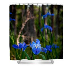 Shower Curtain featuring the photograph Louisiana Iris Field by Andy Crawford
