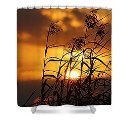 Shower Curtain featuring the photograph Louisiana Marsh Sunset by Luana K Perez