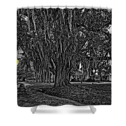Louisiana Moon Rising Monochrome 2 Shower Curtain by Steve Harrington
