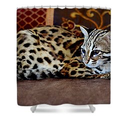 Lounging Leopard Shower Curtain
