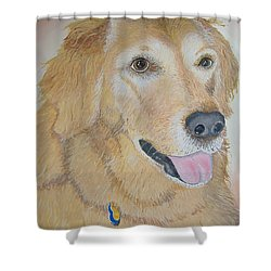 Love And Devotion Shower Curtain by Norm Starks