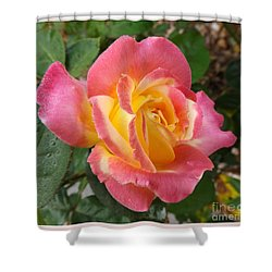 Love And Peace Shower Curtain by Sara  Raber