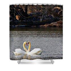 Love Birds Shower Curtain by Richard Engelbrecht
