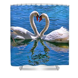 Love For Lauren On Lake Eola By Diana Sainz Shower Curtain by Diana Sainz