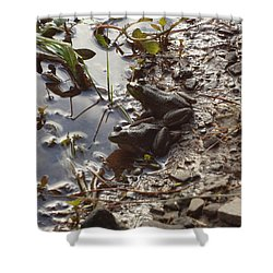 Love Frogs Shower Curtain by Michael Porchik