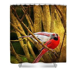 Shower Curtain featuring the photograph Love In A Dark World by Trina  Ansel