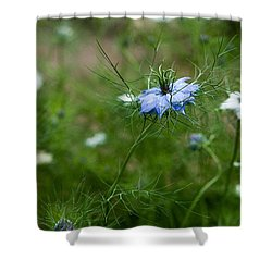 Love In A Mist Shower Curtain