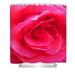 Love In Full Bloom - Anniversary Rose Shower Curtain