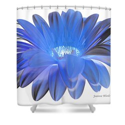 Shower Curtain featuring the digital art Love Is A Gift by Jeannie Rhode