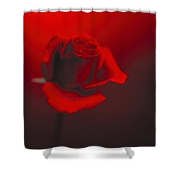 Love Shower Curtain by Lana Enderle
