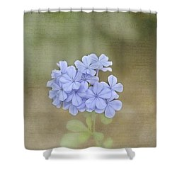Love Letter Shower Curtain by Kim Hojnacki