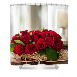 Love Message II Shower Curtain by Jenny Rainbow