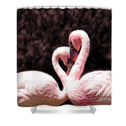 Love Of The Flamingos Shower Curtain