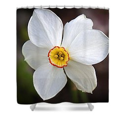Love Smile And Happiness Shower Curtain
