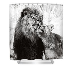 Love Ya You Big Lug Shower Curtain