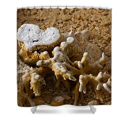 Love Yellowstone One Shower Curtain