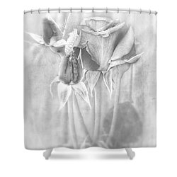 Shower Curtain featuring the photograph Loveliness by Peggy Hughes
