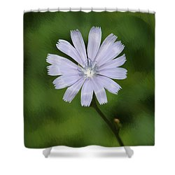 Shower Curtain featuring the photograph Lovely Chickory by Anita Oakley