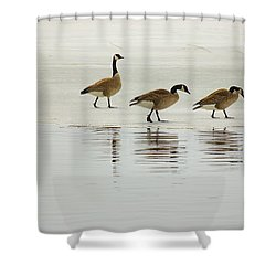 Lovely Day For A Stroll Shower Curtain