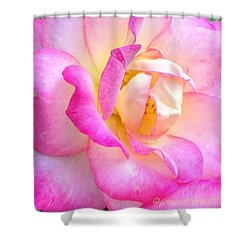 Lovely Lady Diana Rose Shower Curtain by Anna Porter