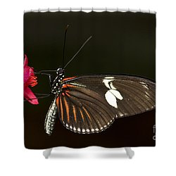 Lovely Longwing Shower Curtain