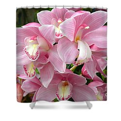 Shower Curtain featuring the photograph Cymbidium Pink Orchids by Jeannie Rhode