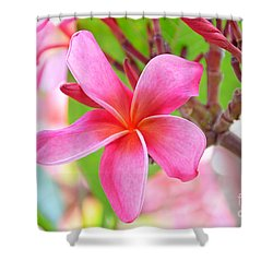 Shower Curtain featuring the photograph Lovely Plumeria by David Lawson