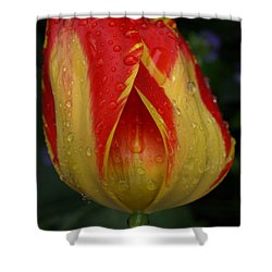 Lovely Tulip Shower Curtain
