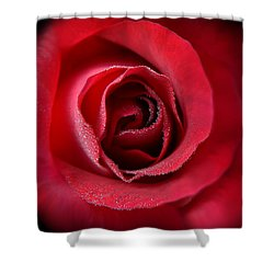 Love's Eternal Red Rose  Shower Curtain by Jennie Marie Schell