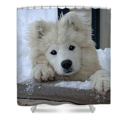 Loving The Snow Shower Curtain