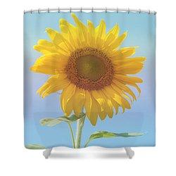 Loving The Sun Shower Curtain by Ann Horn