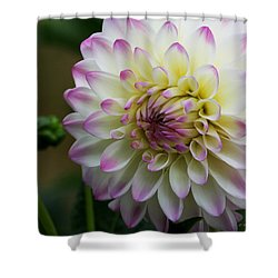 Loving You Shower Curtain by Jeanette C Landstrom
