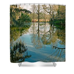 Low Country Swamp Shower Curtain